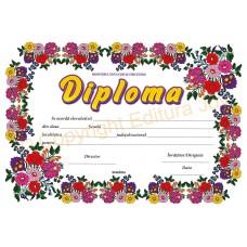 Diploma D2