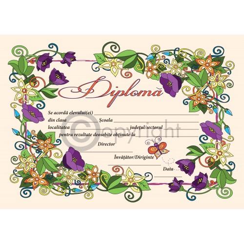 Diploma D6