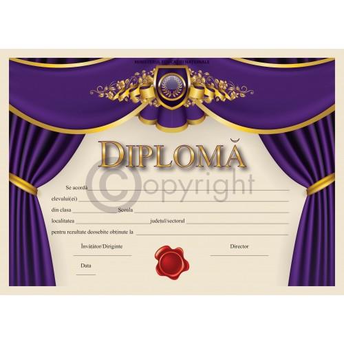 Diploma D11 2020