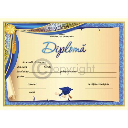 Diploma D2 2019