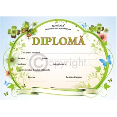 Diploma D4 2019