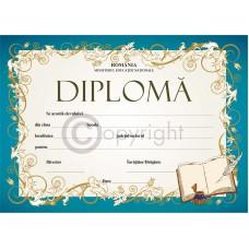 Diploma D6 2019