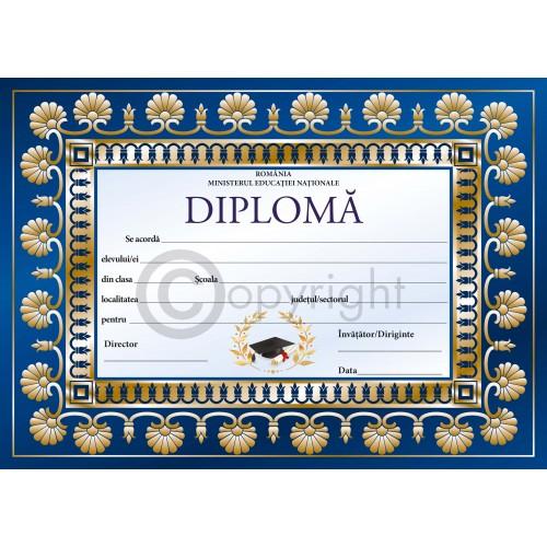 Diploma D7 2019