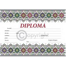 Diploma D9 2019