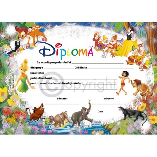 DIPLOMA DE GRADINITA 2 2019
