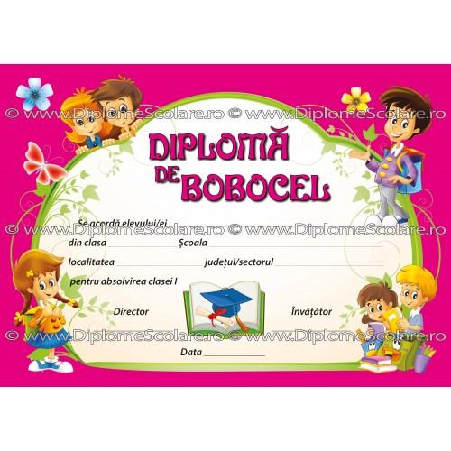 DIPLOMA BOBOCEL 2017